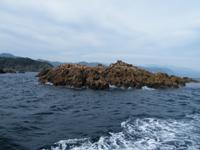 赤根島5名