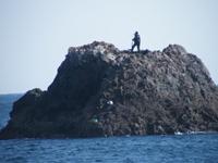 根島(低)ハナレ2名、根島(高)2名